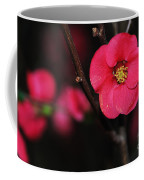Pink Blossom In The Evening Coffee Mug