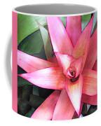 Pink Bromeliad Coffee Mug