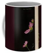 Pink Cosmic Stars  Coffee Mug