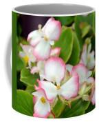 Pink Dipped Coffee Mug