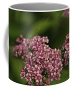 Pink Flower Cluster Coffee Mug