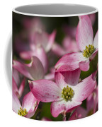 Pink Flowering Dogwood - Cornus Florida Rubra Coffee Mug