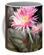 Pink Gerber Daisies Coffee Mug