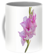 Pink Gladiolus Coffee Mug
