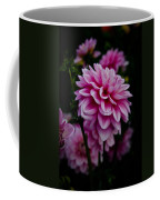 Pink II Coffee Mug