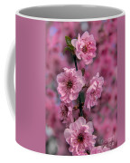 Pink On Pink Coffee Mug by Robert Bales
