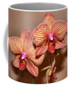 Pink Orchid2 Coffee Mug