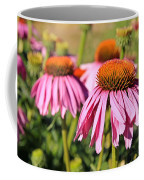 Pink Pedals Coffee Mug