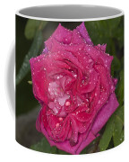 Pink Rose Wendy Cussons With Raindrops Coffee Mug