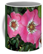 Pink Single Roses Coffee Mug