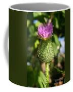 Pink Top Coffee Mug