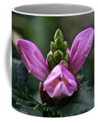 Pink Turtlehead Coffee Mug