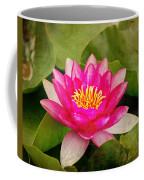 Pink Water Lilly Coffee Mug
