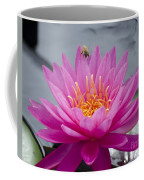 Pink Water Lily Rose Arey With Bee Coffee Mug