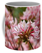 Pinxterflower Azalea Coffee Mug