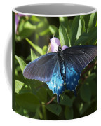Pipevine Swallowtail Din003 Coffee Mug