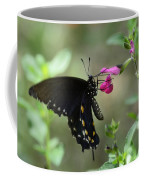 Pipevine Swallowtail  Coffee Mug