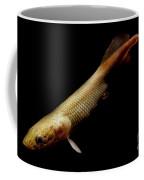 Pirarucu Coffee Mug