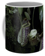 Pitcher Plant Inside The National Orchid Garden In Singapore Coffee Mug
