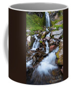 Plaikni Falls Coffee Mug