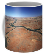 Plants Grow Along Desert River Drainage Coffee Mug
