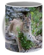 Playful Afternoon Coffee Mug