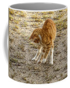 Playful Yellow Kitty Coffee Mug