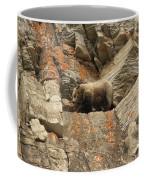 Playing Mountain Goat Coffee Mug