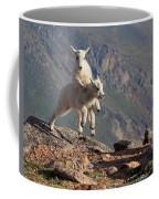 Playtime On The Brink Coffee Mug