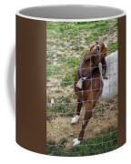 Please Exonerate Me 2 - Billy Goat Coffee Mug