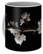 Plum Tree Spring Blossum Coffee Mug