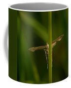 Plume Moth Coffee Mug