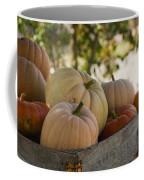 Plump And Purdy Pumpkins Coffee Mug