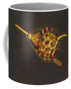 Podocyrtis Triacantha Lm Coffee Mug