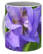 Poetry Of An Iris Coffee Mug