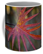 Pointedly Coffee Mug
