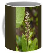 Poke Sallet Blossom Spire - Phytolacca Acinosa  Coffee Mug