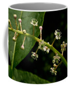 Poke Sallet Flowers Coffee Mug