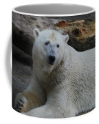 Polar Bear 1 Coffee Mug