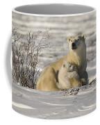 Polar Bear With Cub, Watchee Coffee Mug