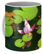 Polish Beauty Coffee Mug