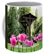 Polson Park Well Coffee Mug