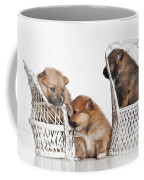Pomeranian 3 Coffee Mug by Everet Regal