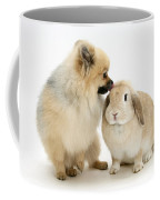 Pomeranian Dog And Rabbit Coffee Mug