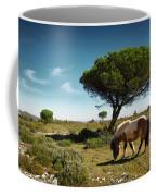 Pony Pasturing Coffee Mug