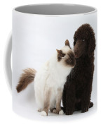 Poodle Pup And Cat Coffee Mug