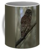 Portrait Of A Barred Owl Perched Coffee Mug