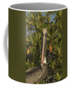 Portrait Of A Brown Pelican Pelecanus Coffee Mug