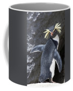 Portrait Of A Rockhopper Penguin Coffee Mug by Kent Kobersteen