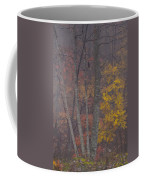 Portrait Of Autumn Coffee Mug